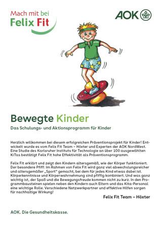"""Flyer """"Felix Fit"""""""